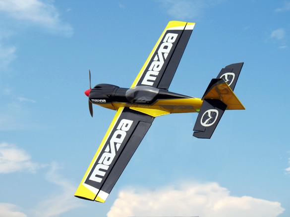 A big R/C plane