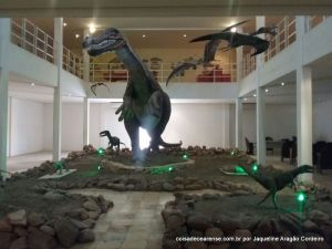 48-Museu de paleontologia (10)