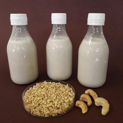 Cientistas desenvolvem bebida da castanha-de-caju com probióticos