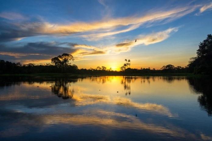 Site oferece visita virtual à Amazônia