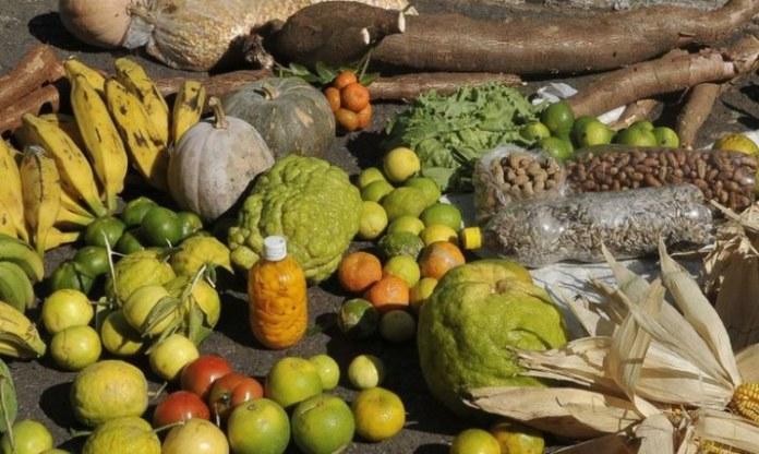 Governo Federal divulga lista de 90 municípios que receberão recursos do Programa de Aquisição de Alimentos