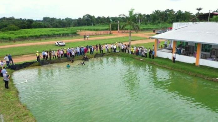 Viagem com embaixadores à Amazônia foi intensa e proveitosa, diz Mourão
