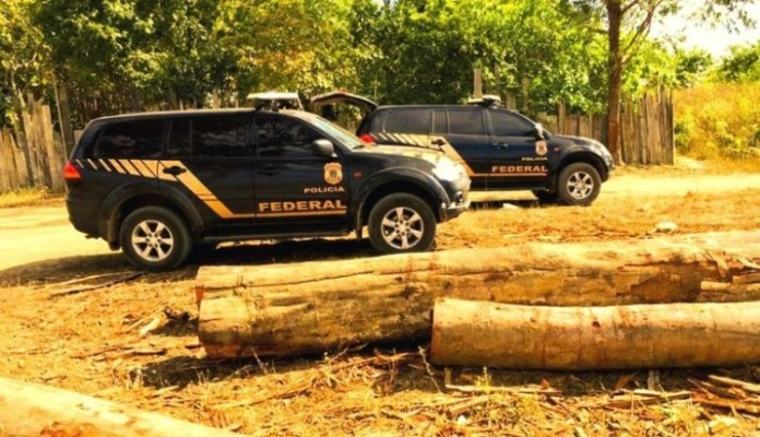 Polícia Federal faz apreensão histórica de madeira