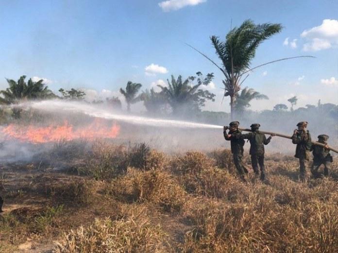 Nove meses da Operação Verde Brasil 2