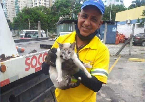 Gato fica preso em mureta da Terceira Ponte
