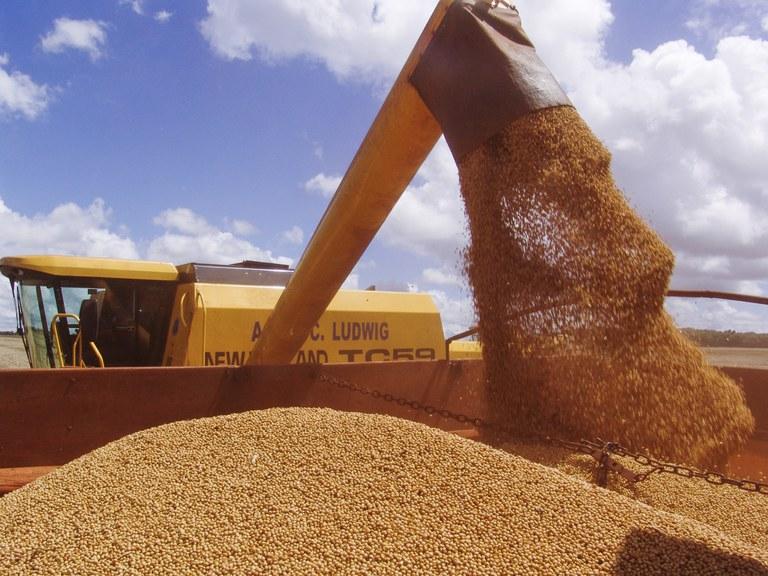 Safra de grãos deve chegar a 262,13 milhões de toneladas