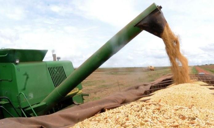 Produção de grãos crescerá 27% nos próximos dez anos