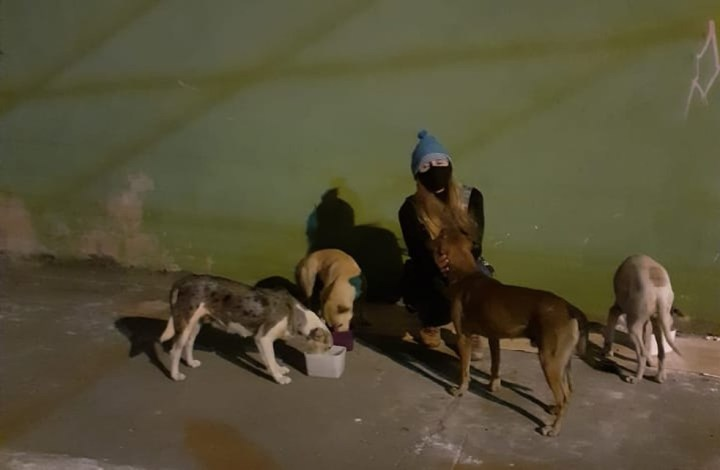 Voluntária distribui ração arrecadada para animais de rua no ES — Foto: VC no G1