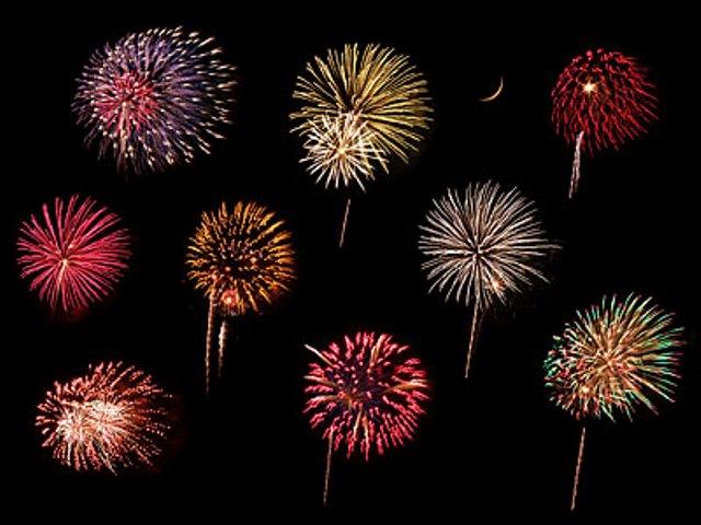 Fireworks That Looks Like Flowers Amp Flowers That Looks Like Fireworks