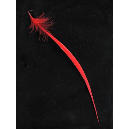 red-goose-biot-feathers