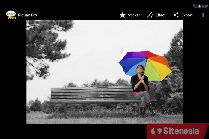 Gambar Screenshoot Dari Aplikasi Download PicSay PRO APK Versi Terbaru Gratis Untuk Android