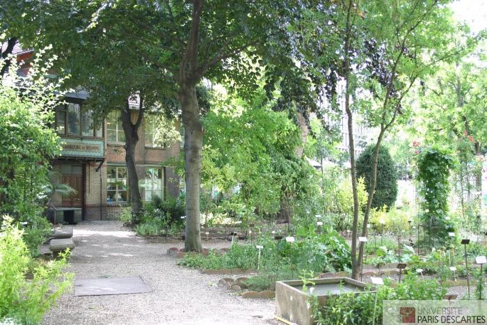 Le jardin botanique fondation paris descartes for Jardin botanique paris