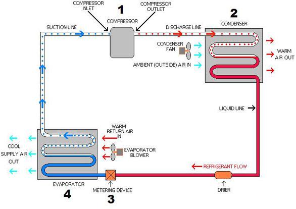 Ammonia Systems Flow Diagram
