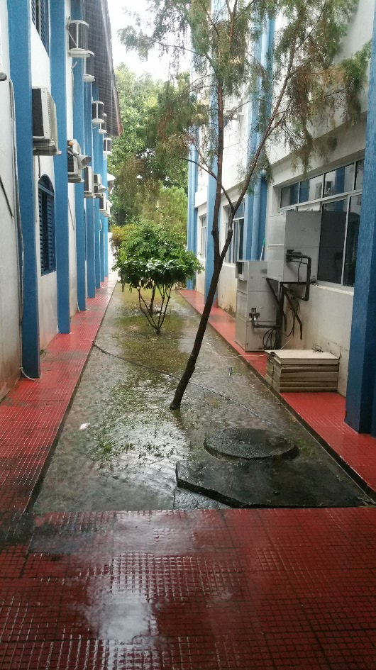 Tropical rain in Boa Vista