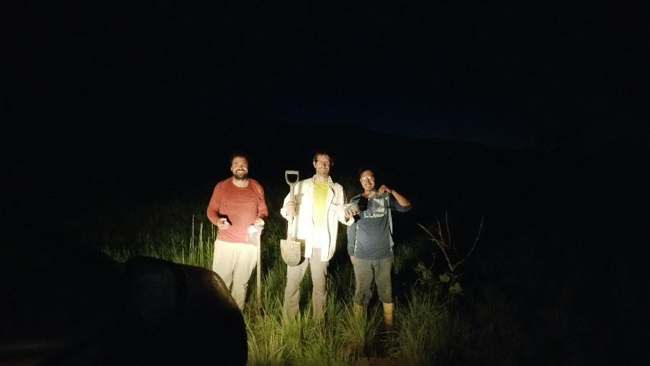 Sampling in the dark