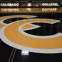 Joshua Birndorf 2/07/2020 Students and faculty file into Colorado College's Reid Arena to see the unveiling of the hew tiger logo. Everyone is excited to see how the re-deisgn looks on the court, on the scoreboard, and in the promotional video.