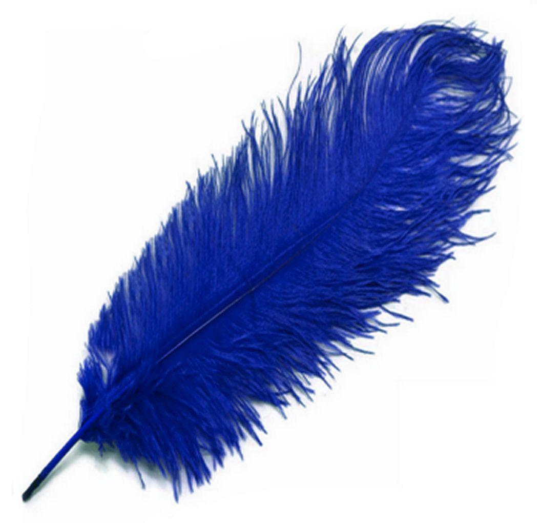 Royal Blue Ostrich Drab Feather