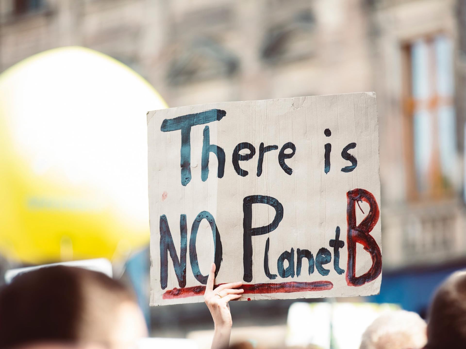 Homemade poster 'There is no planet B' being held at a demonstration