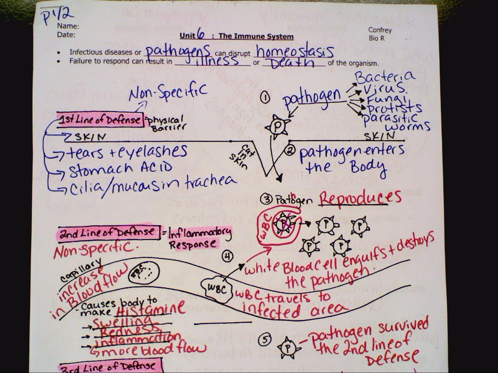 Regents Notes