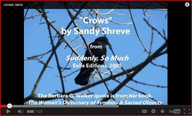 "Sandy Shreve, ""Crows"" Video"