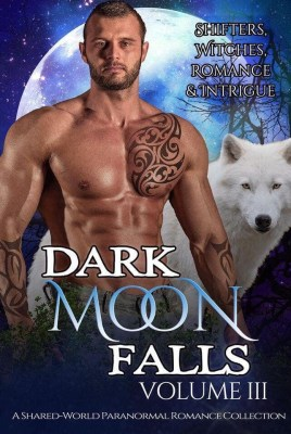 Dark Moon Falls cover