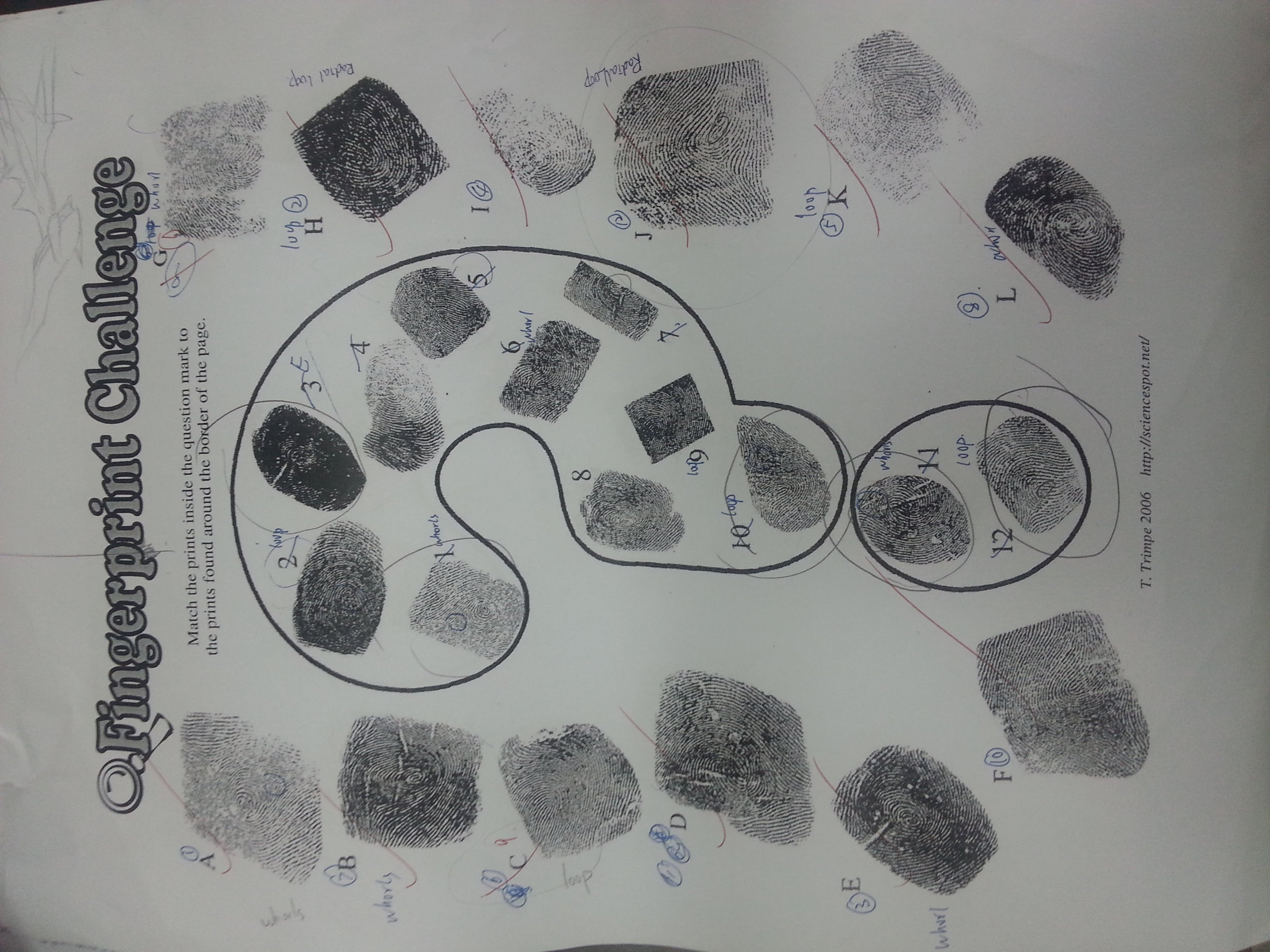 Printables Of Fingerprint Challenge Worksheet Answers