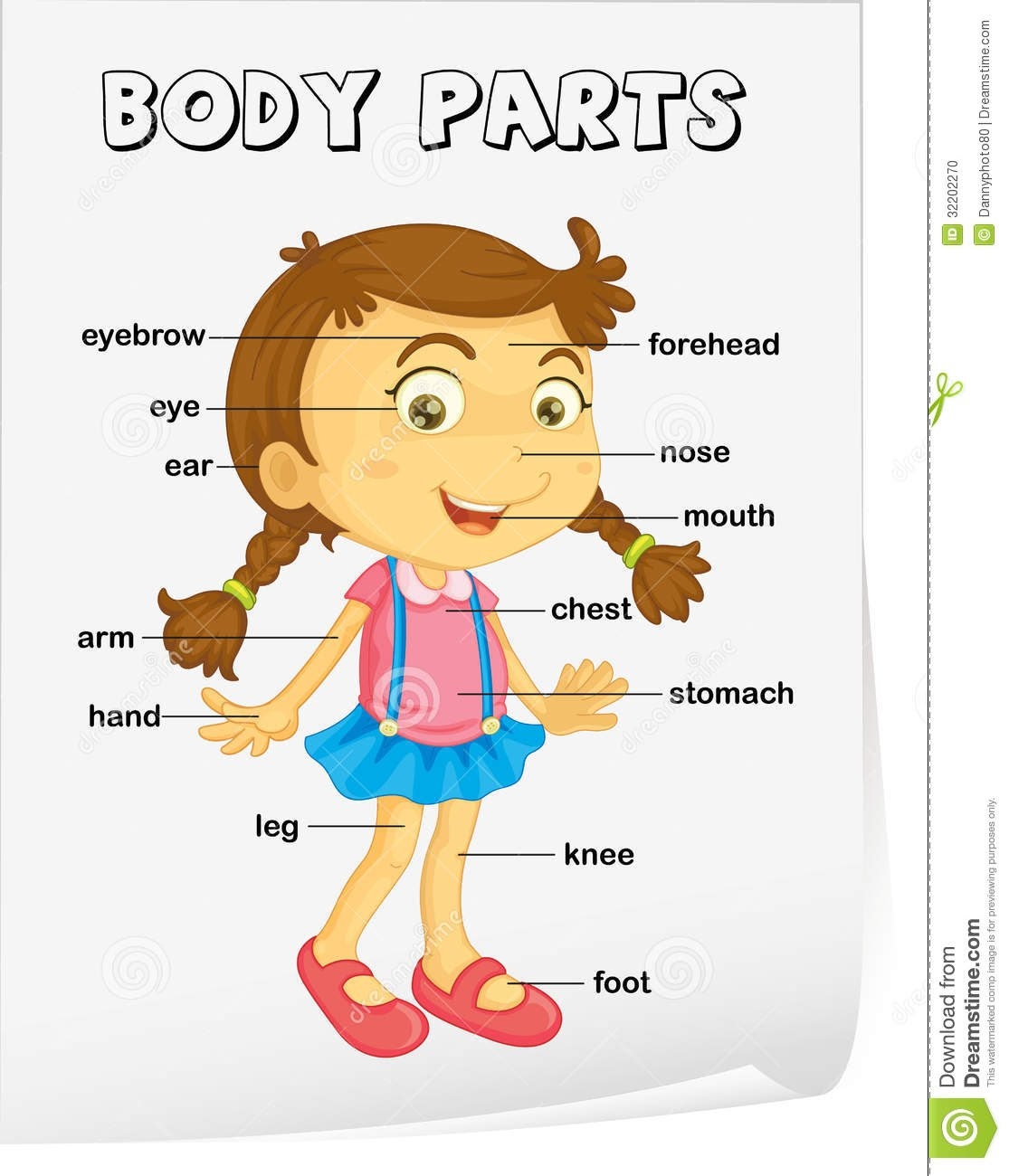 My Body English For Kids