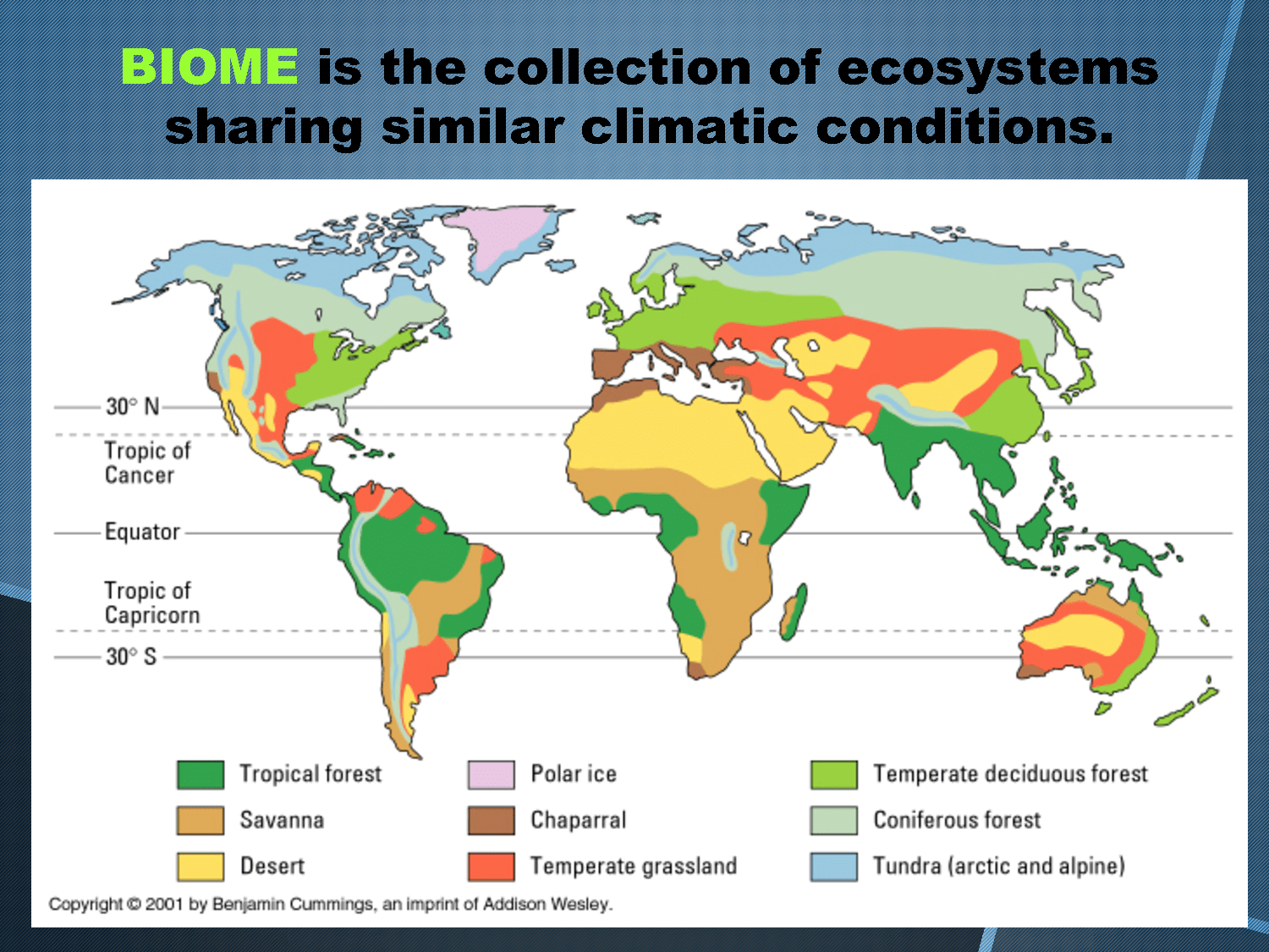 Map Of Biome Locations In The World