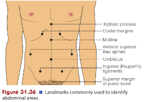 Image result for abdominal percussion