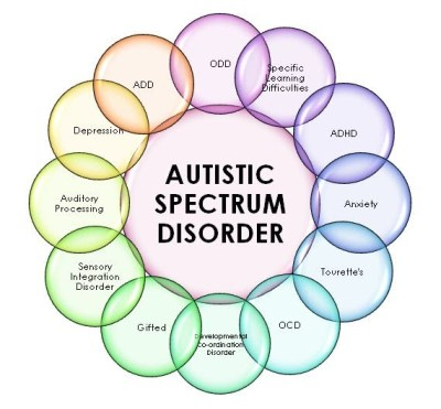 Image result for aspergers