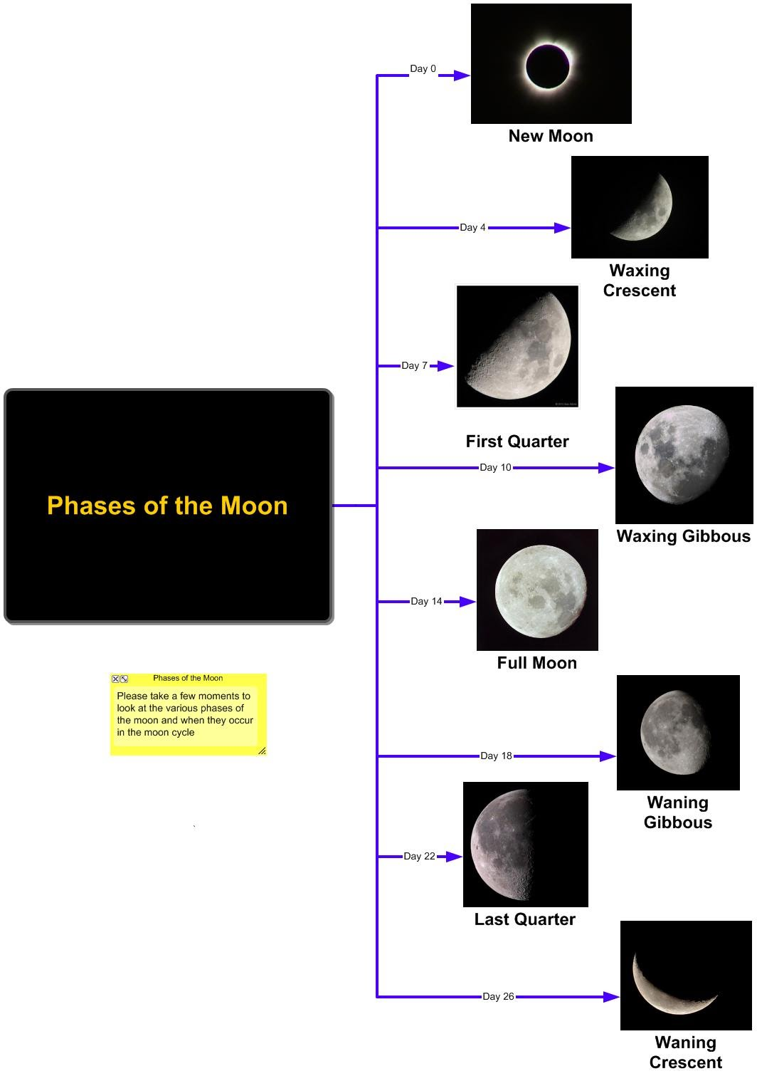 Phases Of The Moon Graphic Organizer