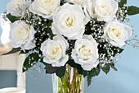 What do white flowers represent flower shop near me flower shop what do white flowers represent image collections flower what do white flowers represent images flower decoration ideas what do white flowers represent mightylinksfo