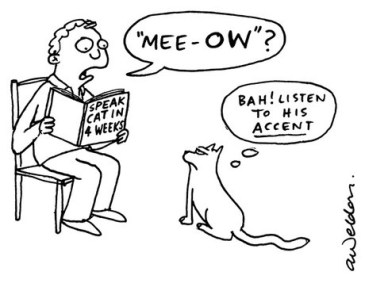 Image result for accents