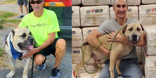 Get to Know: Dan Egeler '86, four marathons, one cause