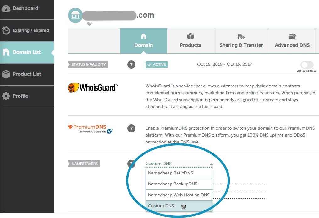 Namecheap nameserver settings custom dns