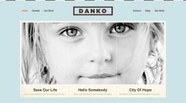 danko_v1
