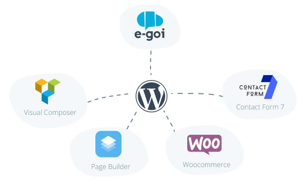 Plugin Integração E-Goi com WordPress
