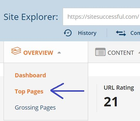 sitesuccessful-top-pages