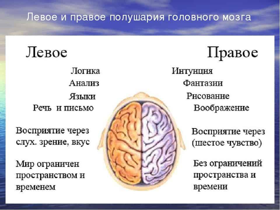 Что хорошо для улучшения памяти