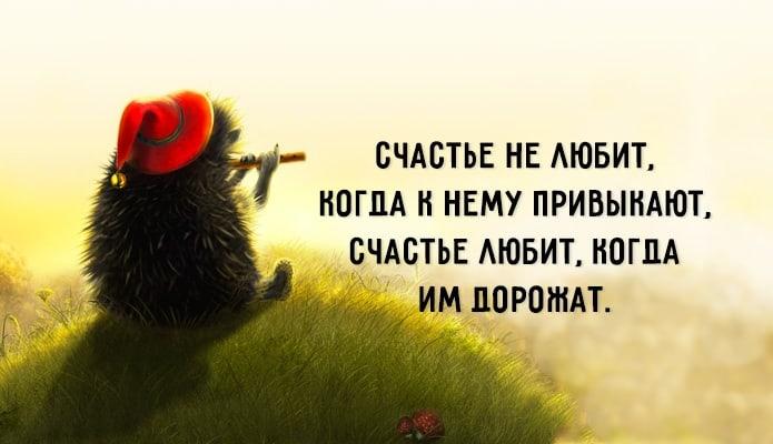Цитаты про радости жизни
