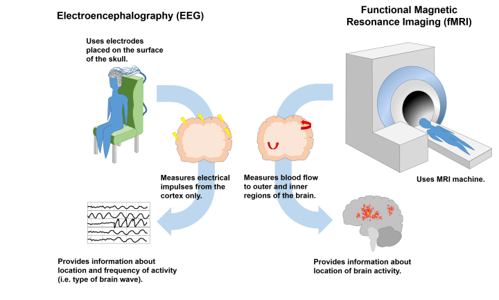 Figure 1. Neurofeedback commonly makes use of two technologies to obtain information about brain function. Electroencephalography (EEG, left) uses electrodes placed on the scalp to detect electrical impulses produced by neurons residing in the outermost layer of the brain, the cortex. Functional Magnetic Resonance Imaging (fMRI, right) measures how much blood flow each region of the brain receives; here, blood flow indicates which regions of the brain are most active.