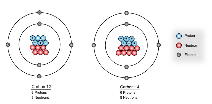 Figure 1: The most abundant form of carbon is Carbon 12, which has 6 neutrons and 6 protons. Carbon 14 is a radioactive isotope of carbon that has 8 neutrons.