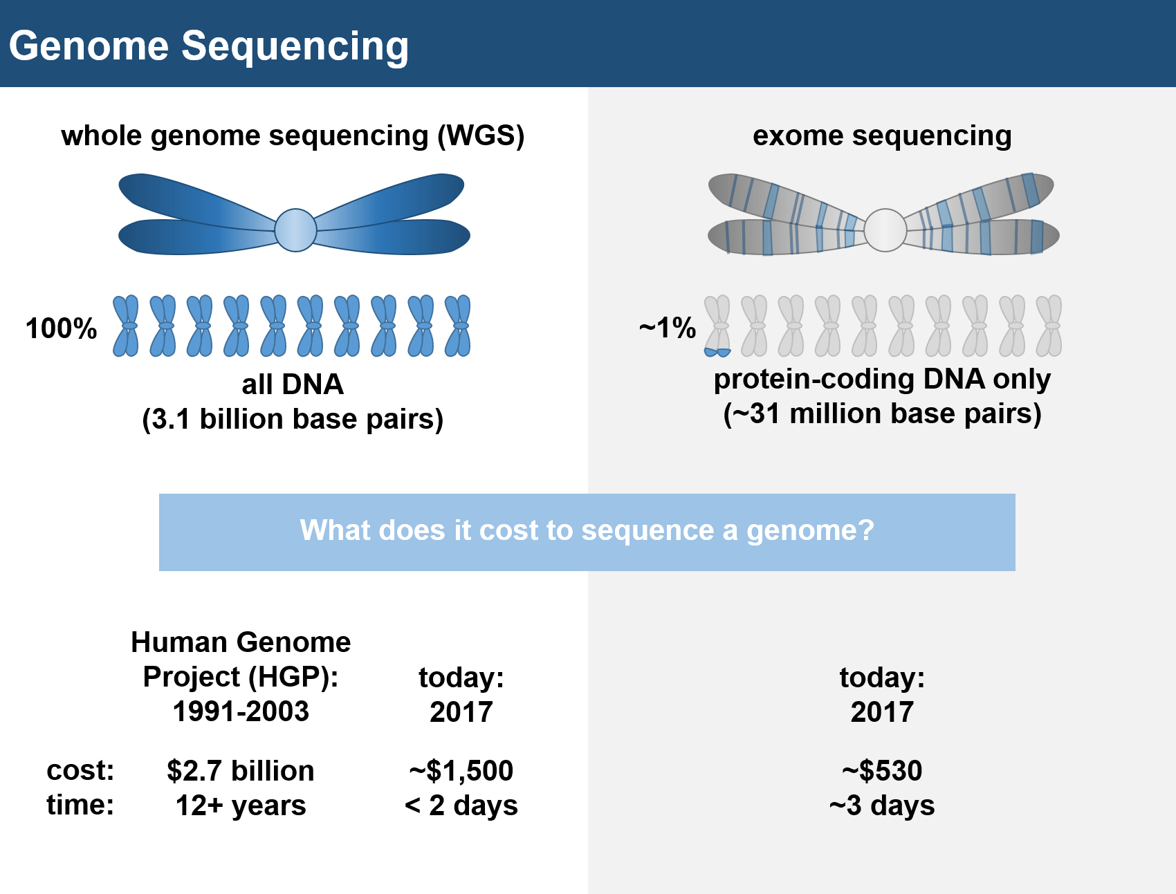 Its Genome Was Sequenced Last Year But >> Strength In Numbers Genetic Sequencing Of Large Populations Is