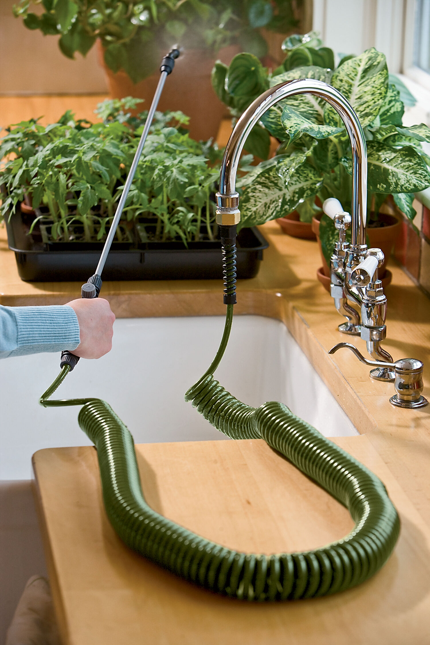 mini indoor garden hose sprayer with coil Indoor Plant Watering Hose - Mini Coil Indoor Garden Hose