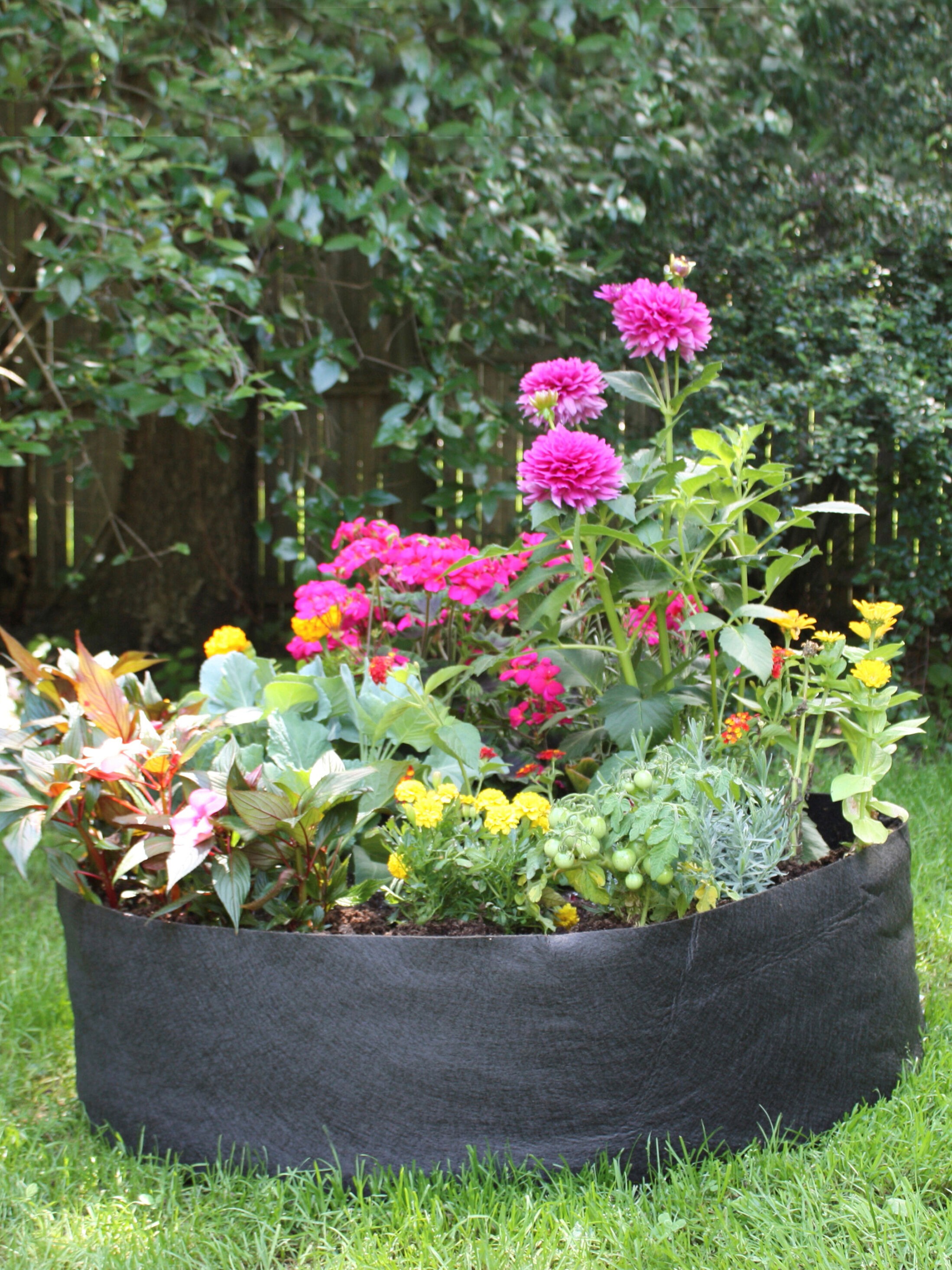 Square Plant Pots Uk