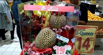 Durian J-Queen