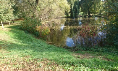 Ekologické otázky z teologické perspektivy