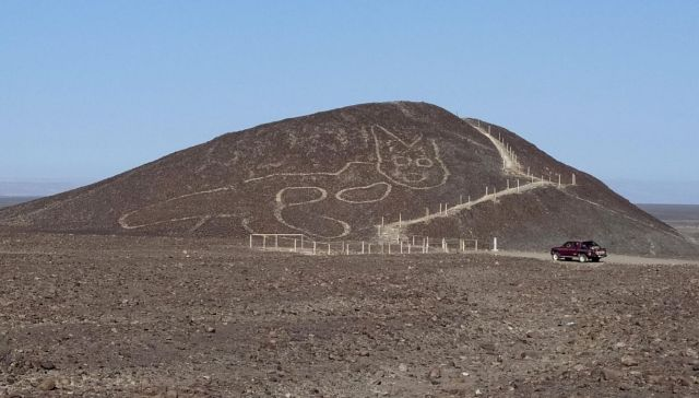 Linee Nazca Peru spunta geoglifo gatto