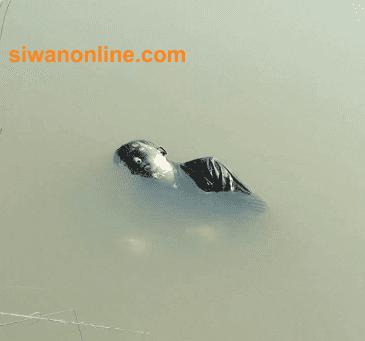 crime in siwan