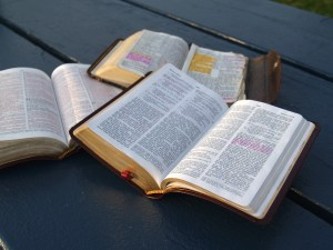 Bible, study